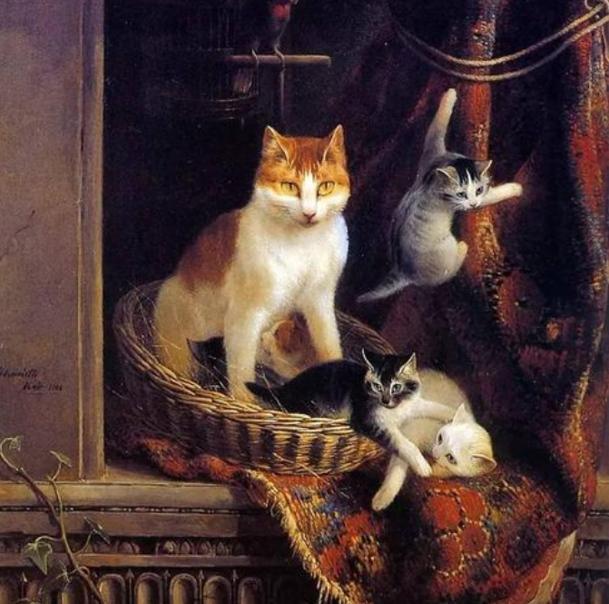 猫的历史:从魔鬼走向宠物C位