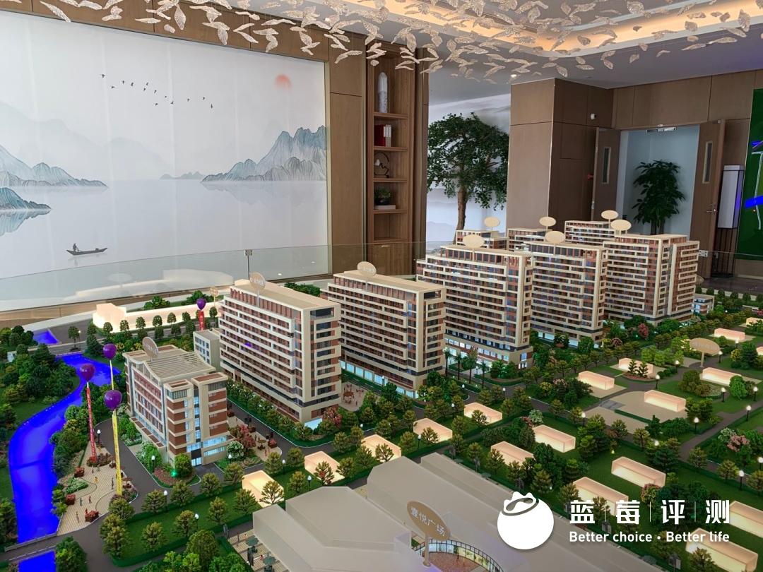 蓝莓评测 | 2020-2021最佳高端养老机构(广州、深圳)-蓝莓评测