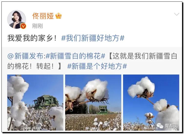 禁用新疆棉花,干涩中国内政,HM、优衣库、ZARA、耐克、阿迪达斯等引公愤69