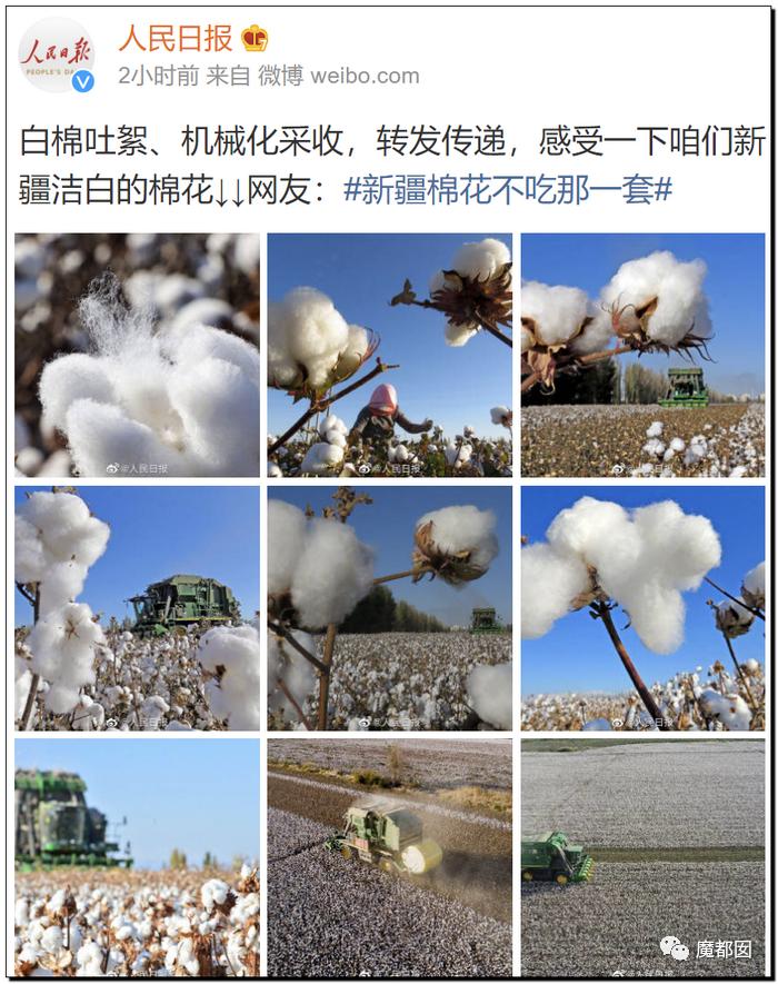 禁用新疆棉花,干涩中国内政,HM、优衣库、ZARA、耐克、阿迪达斯等引公愤64
