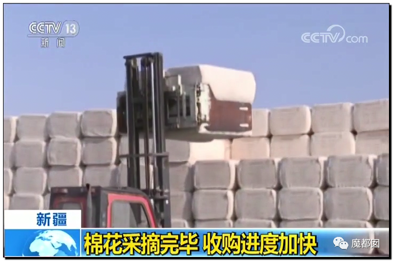 禁用新疆棉花,干涩中国内政,HM、优衣库、ZARA、耐克、阿迪达斯等引公愤24