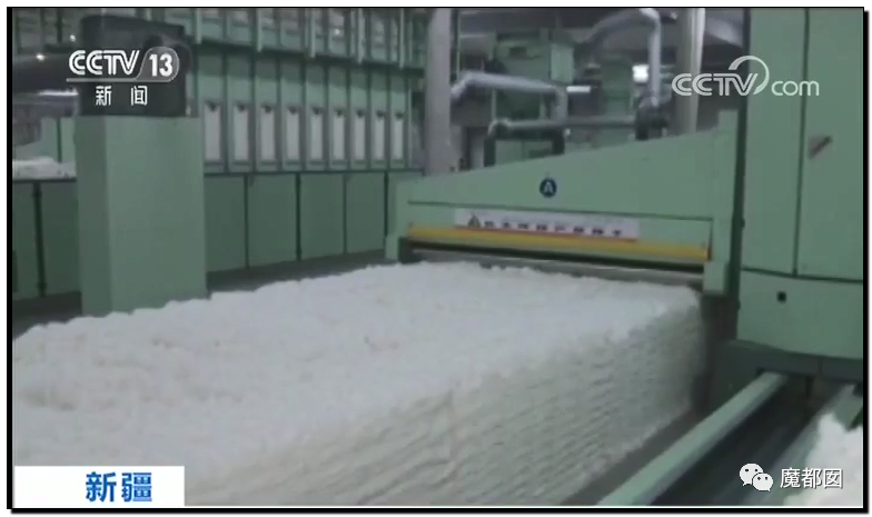 禁用新疆棉花,干涩中国内政,HM、优衣库、ZARA、耐克、阿迪达斯等引公愤28