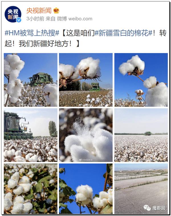 禁用新疆棉花,干涩中国内政,HM、优衣库、ZARA、耐克、阿迪达斯等引公愤55