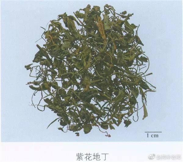 看图识中药,中草药材图片名称大全,中药材材市场价格实拍图片(图148)