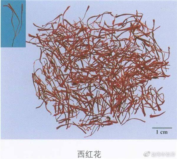 看图识中药,中草药材图片名称大全,中药材材市场价格实拍图片(图115)
