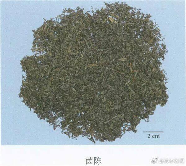 看图识中药,中草药材图片名称大全,中药材材市场价格实拍图片(图157)