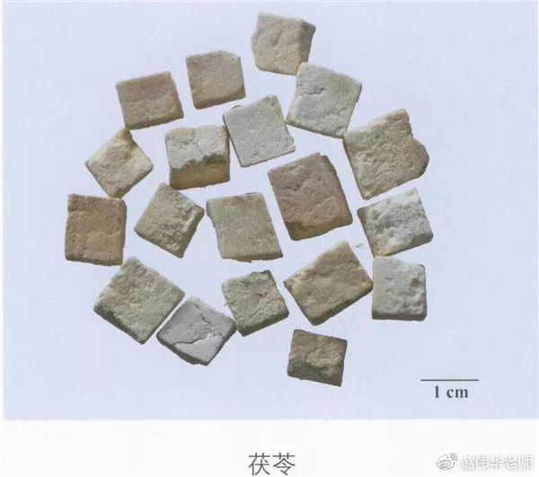 看图识中药,中草药材图片名称大全,中药材材市场价格实拍图片(图164)
