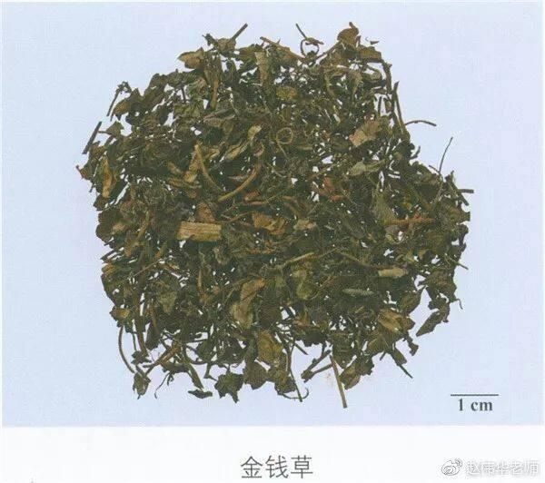 看图识中药,中草药材图片名称大全,中药材材市场价格实拍图片(图149)