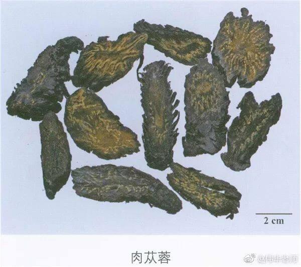 看图识中药,中草药材图片名称大全,中药材材市场价格实拍图片(图155)